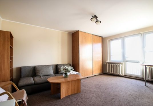 mieszkanie Winogrady Poznań