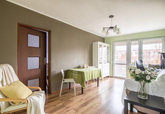 mieszkanie na Winogradach w Poznaniu